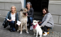Photo competition: Discover Riga together with Your dog!
